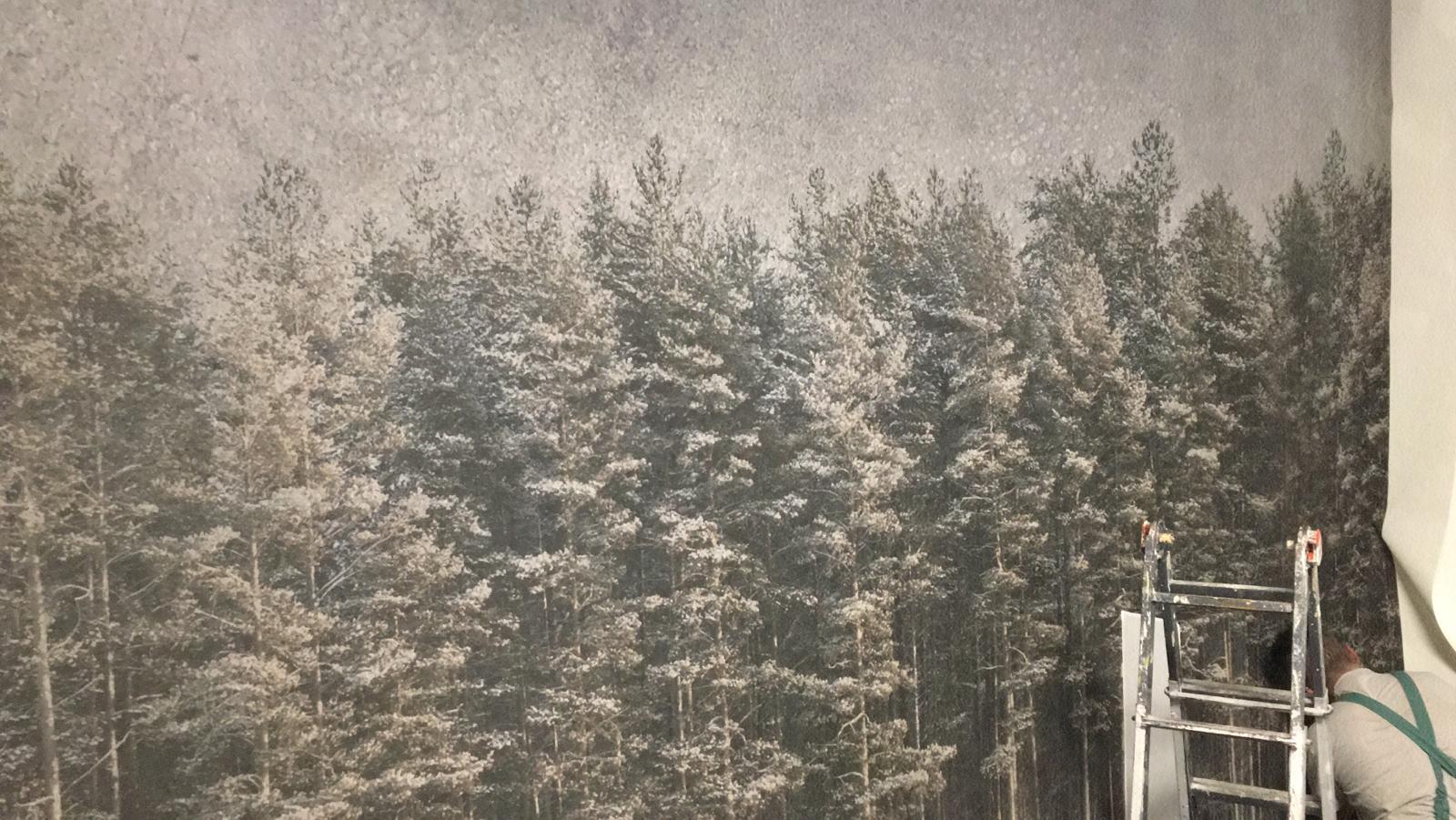 Natale 2020, carta da parati alberi, idrosanitaria lecco